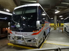 2022AO (damoN475photos) Tags: 2022ao dineen group warragul bus lines scania k124eb coach concepts extv800nswgrayscoaches newcastle nsw vline train replacements southerncross 2019