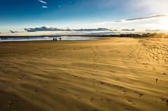 When the Wind Blows (Bud in Wells, Maine) Tags: maine wells wellsbeach goldenhour winter sand wind people hss