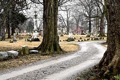 Historical Linden Grove Cemetery and Arboretum (durand clark) Tags: cemetery lindengrovecemetery covingtonkentucky westernbaptisttheologicalinstitute arboretum historicalcemetery northernkentucky nikonz6 nikonmirrorlessz6 nikon2470f4s