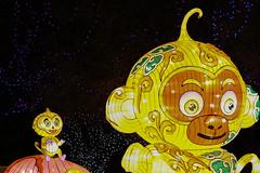Monkey Lanterns (sgnelson2) Tags: chinese monkey lantern festival zoo park tucson arizona