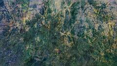 Bildschichten Am Fluss 17 Wieltsee (wos---art) Tags: bildschichten fluss river wasser water unterwasser underwater gestrüpp bäume baum verbrand ausgehöhlt rus äste ufer