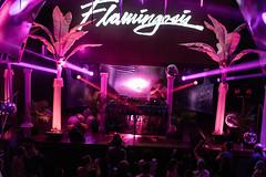 SF_Show69 (Hafstadphoto) Tags: yung bae aritus night tempo san francisco flamingosis life show future funk