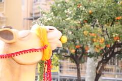 IMG_0155 (jeremblanc) Tags: fete des citrons menton noah alex 2019