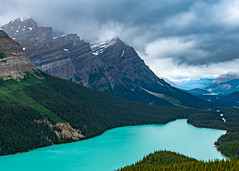Peyto Lake 1 (davetherrienphoto) Tags: forest snow tree peytolake placid pine slope stormy glacial mountain canadianrockies canada glacier cliff aquamarine clouds