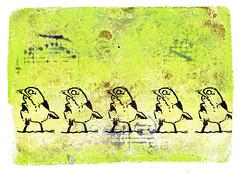 Song Birds (lwdphoto) Tags: lance duffin lancewadeduffin lanceduffin monoprint acrylic miniprint bird birds songbirds blockprint print printmaking ink art linocut gelliplate gelli gelliprint