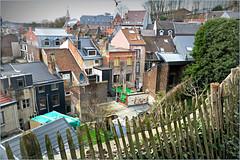 Maisons de la rue Pierreuse, des Terrasses, Liège, Belgium (claude lina) Tags: claudelina belgium belgique belgië liège maisons houses pierreuse