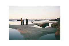 (Julie Stutzman) Tags: beach coast pnw color film oregon oregoncoast usa contaxt3 analog fujifilm 35mm landscape sunset