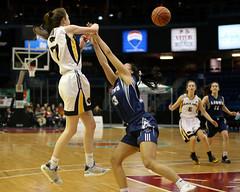 NBIAA 2019 AAA GIRLS FHS Black Kats VS LHHS Lions 8497 10x8 (DaveyMacG) Tags: saintjohn newbrunswick canada nbiaafinal122019 interschoastic basketball girlsaaachampionship frederictonhighblackkats leohayeslions canon6d