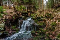 Am Bach (Andi Fritzsch) Tags: nature naturephotography landscape landscapephotography creek river riverscape riverscapephotography spring moos moss tree trees nikond5100 water waterfall wasserfall breathtakinglandscapes