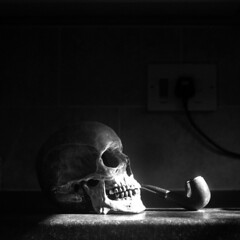 Schmokin (D I C K S D A I L Y) Tags: yashicamat124g blackandwhite camera film skull vanitas pipe yashica mat 124g | fuji neopan 400 rodinal 125