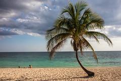 Caribbean beach (s_andreja) Tags: cuba trinidad beach playa ancon caribbean turquoise sea water palm sand