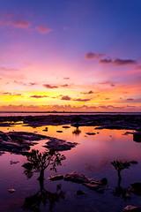 Happy New Year! (NettyA) Tags: 2012 australia darwin nt nightcliff northernterritory clouds mangroves rockplatform silhouette sunset