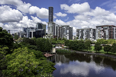 roma street parkland (Greg M Rohan) Tags: units apartments reflection clouds sky architecture skyscraper skyscrapers skyline grass garden buildings building green trees water romastreetparkland brisbane queensland australia romastreet 2018 d750 nikon nikkor
