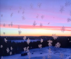 Snow at the Windows (annsphoto) Tags: natur art windows sykehus norway norge östfold kalnes snö snow