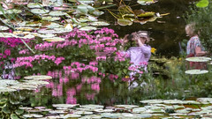 Photographer reflected (Ruth Flickr) Tags: europe france giverny flora holiday inverted people photographer pink reflection summer water