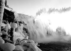 Tännforsen (callemattisson) Tags: tännforsen jämtland norrland sverige sweden waterfall water fujifeed fujifilm fujix100s blacknwhite black white longexposure