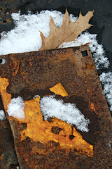 A Dusting of Snow 2 (Doris Burfind) Tags: rust junk abstract wolflane winter snow metal truck