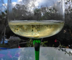 Bubbles World  __  20190113191039~2 (mshnaya ☺) Tags: bubbles champagne wine bubbly sekt prosecco gourmet fine epicure flickr leicac compact camera photo photography new year celebration