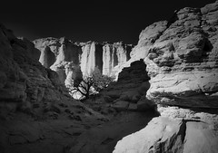 Plaza Blanca at Shadow Time (janeselverstone) Tags: plazablanca newmexico landscape monochrome canyon