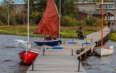 Boats (raymond_zoller) Tags: baum boot canonef70200mmf28lusm canoneos6dmarkii places segel arbre boat drzewo eau sail tree wasser water woda árbol пено вода дерево зелень лодка парус ხე