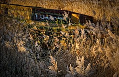 gently away... (nerd.bird) Tags: purton barge river severn grass bank decay neglected