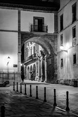 Oviedo antiguo (ccc.39) Tags: asturias oviedo plaza calle ciudad arquitectura noche nocturna blancoynegro byn monocromo monumento city street night blackandwhite bw monochrome architecture oldtown