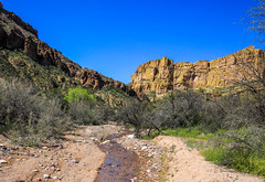 Water in the Desert (Buck--Fever) Tags: waterinthedesert water arizona arizonaskies arizonadesert arizonawonders earthnaturelife apachetrail centralarizona canon60d landscape nature stream cliffs canyon