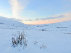 Pen Y Fan (LouisaHocking) Tags: brecon beacons penyfan mountain southwales snow white sunrise