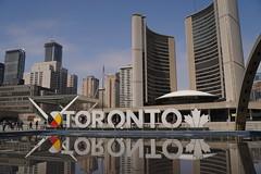 Toronto! (Camusi) Tags: toronto ontario city ville downtown spring printemps reflection mairie cityhall reflet
