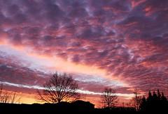 Sunrise. (Gillian Floyd Photography) Tags: sunrise