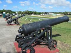 16th Century Cannon (D-Stanley) Tags: cannon bridgetown barbados caribbean savannah