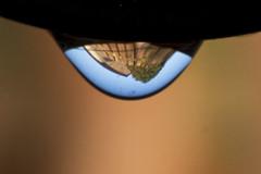 A Drop of Life (steve_whitmarsh) Tags: macro closeup art refraction drip water fence topic abigfave