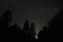 HInt of aurora (Stellarperception) Tags: astrometrydotnet:id=nova3184848 astrometrydotnet:status=solved aurora perseus auriga taurus pleiades cassiopeia northwest