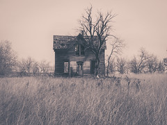 (Rodney Harvey) Tags: abandoned house marquette kansas rural decay lonely dead tree stark surreal