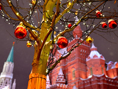 DSC_2233 (wolfcy1) Tags: moscow christmas russia winter