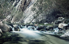 River (Vic Fine Art Photography) Tags: sky sunset scenery amazing forest flowers falls field flickr explore explores travel trees tejon yellow jeep kerncountyriver lake landscape light life lens mountains morning nature nationalpark natural