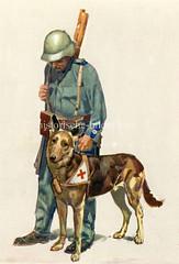 X990019 arbeitshund schweiz (stadt + land) Tags: hunde hund bilder fotos arbeitshund historisch früher aufgabe transport alte fotografien