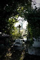 Kensal Green Cemetery (London Less Travelled) Tags: uk unitedkingdom britain england london brent city urban suburban suburbs suburbia cemetery grave tomb kensalgreen light cross crucifix