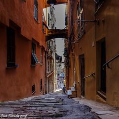 Genova, quartiere del Carmine (Gian Floridia) Tags: genova carugi colori discese giallo ocra quartieredelcarmine