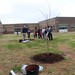 Newell_Elem_Tree_Planting_2019  (56)