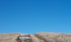 Anglų lietuvių žodynas. Žodis hilltop reiškia n kalnelio/kalvos viršūnė lietuviškai.