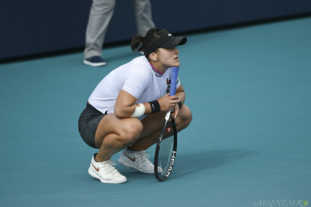 The World's Best Photos of andreescu - Flickr Hive Mind