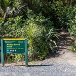 Watkin Powell Track- Whananaki, Northland thumbnail