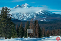 Roadtrip 65 (Kasia Sokulska (KasiaBasic)) Tags: canada alberta rockies travel photography winter jasper np roads landscape
