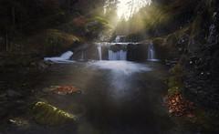 The light (explore) (Rafael Díez) Tags: españa larioja villosladadecameros paisaje otoño rio agua hojas rafaeldíez filtro polarizador panorámica rocas cascada
