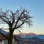 2019-03-29 03-31 Südtirol-Trentino 012 Susà thumbnail