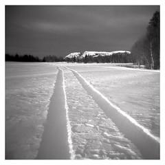 (2010) (phamnes) Tags: vignetting norway toycamera filmphotography rodinal epsonv600 snow winter 6x6 120film delta400 ilford mediumformatfilm plasticcamera plasticlens holga120n holga