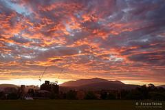 20190104-07-Hobart sunset (Roger T Wong) Tags: 2019 australia cemotaph domain hobart rogertwong sel24105g sony24105 sonya7iii sonyalpha7iii sonyfe24105mmf4goss sonyilce7m3 tasmania clouds sky sunset