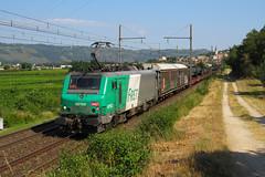 BB 27102+militaire n°445629 Sibelin - Orange (railmax07) Tags: train ferroviaire fret prima bb27000 sncf militaire champselysées gervans sibelin orange