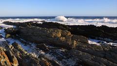 Rugged coast (__ PeterCH51 __) Tags: rugged coast ruggedcoast sea ocean seashore beach tsitsikamma nationalpark tsitsikammanationalpark gardenroute southafrica za peterch51 evening eveninglight